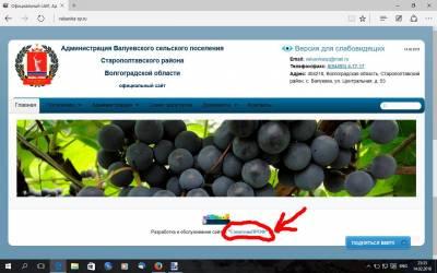 чудо с синими ягодами от советникпроф